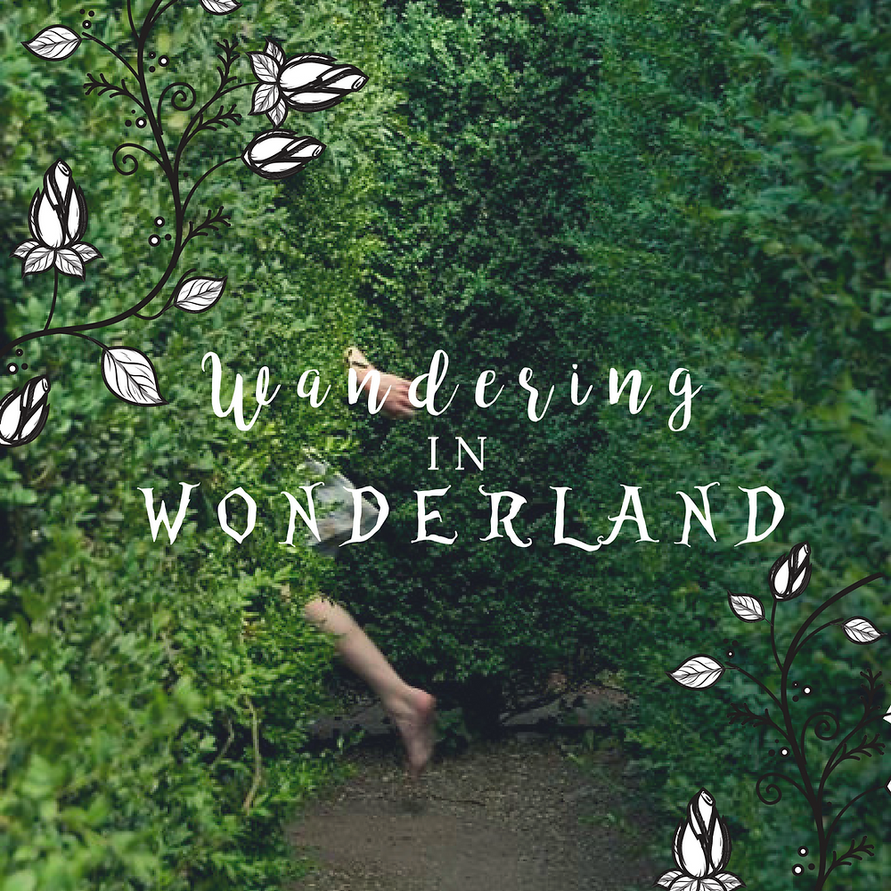 Promo for Wandering in Wonerland