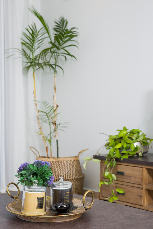 עיצוב פנים| הום סטיילינג | הלבשת הבית| עיצוב סלון| מזנון | שולחן סלון| שטיח | ספה| וילונות | כריות נוי| דקורציה | עציצים| תאורה | פינת אוכל עגולה| כסאות | כסאות בר