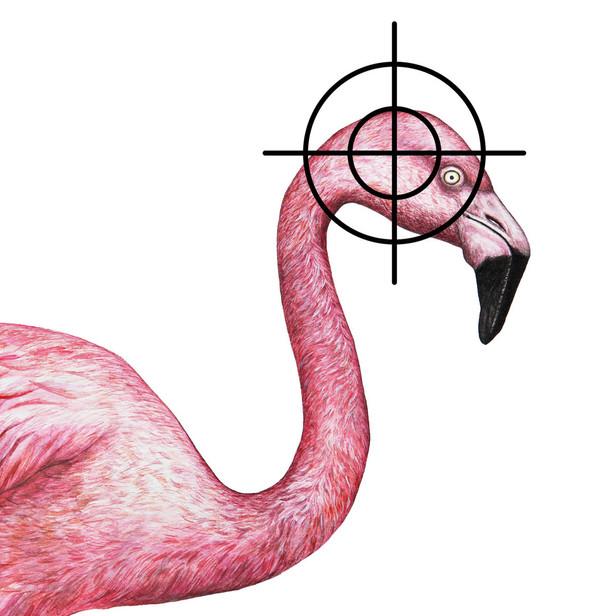 XYLE - Dead Flamingo .jpg