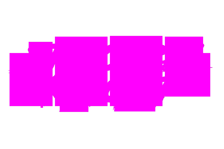 SK Text Logo TSP.png