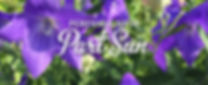 perennials for part sun.jpg