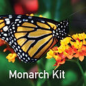 Monarch Garden Kit