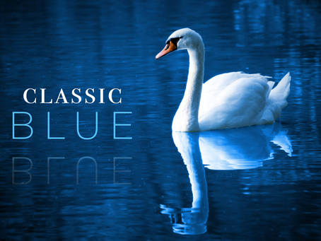 Classic Blue: 2020 Color of the Year