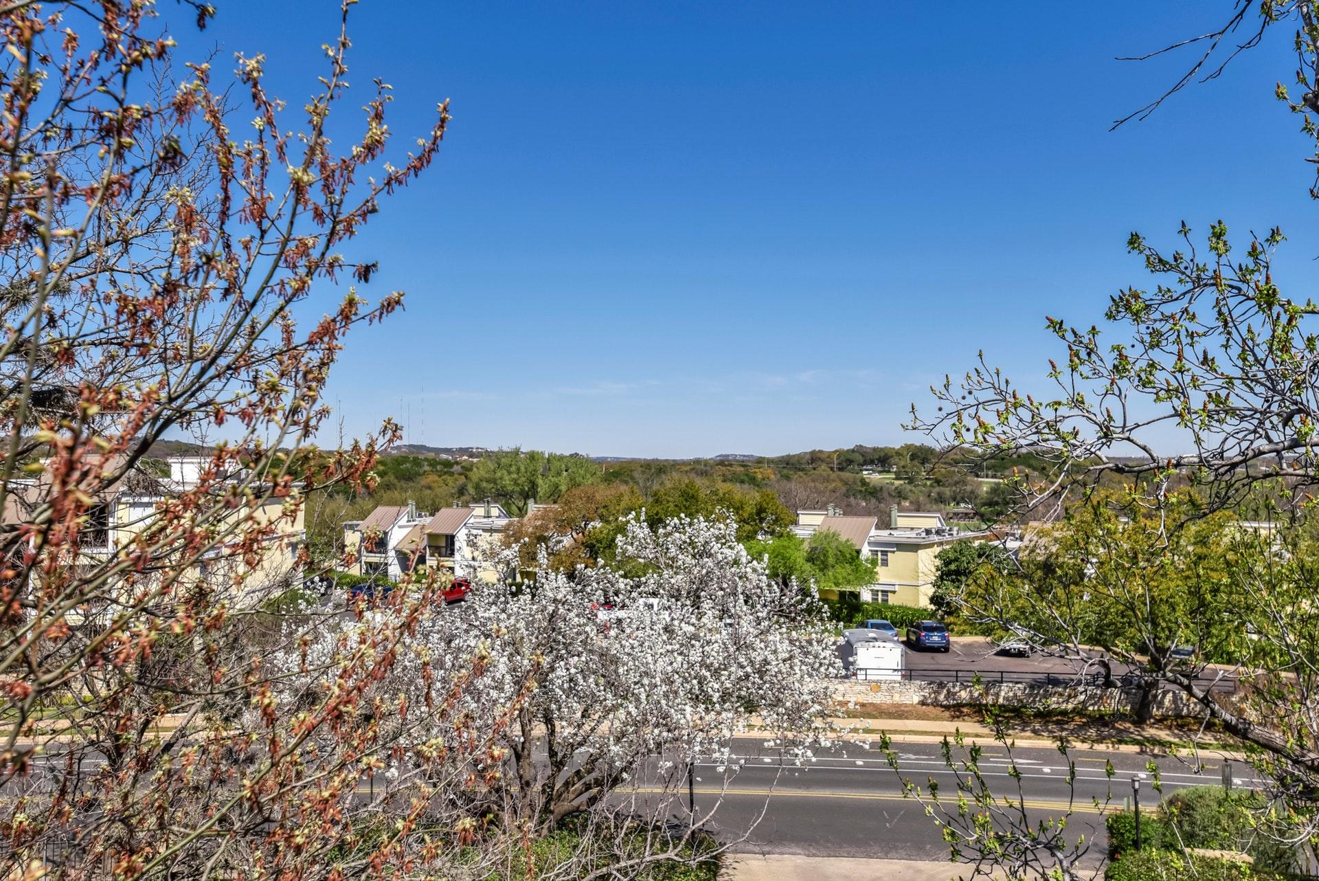 1135 Barton Hills - View