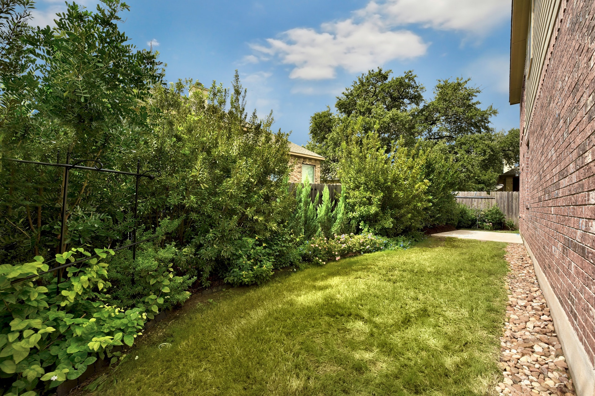 2121 Turtle Mountain - Backyard