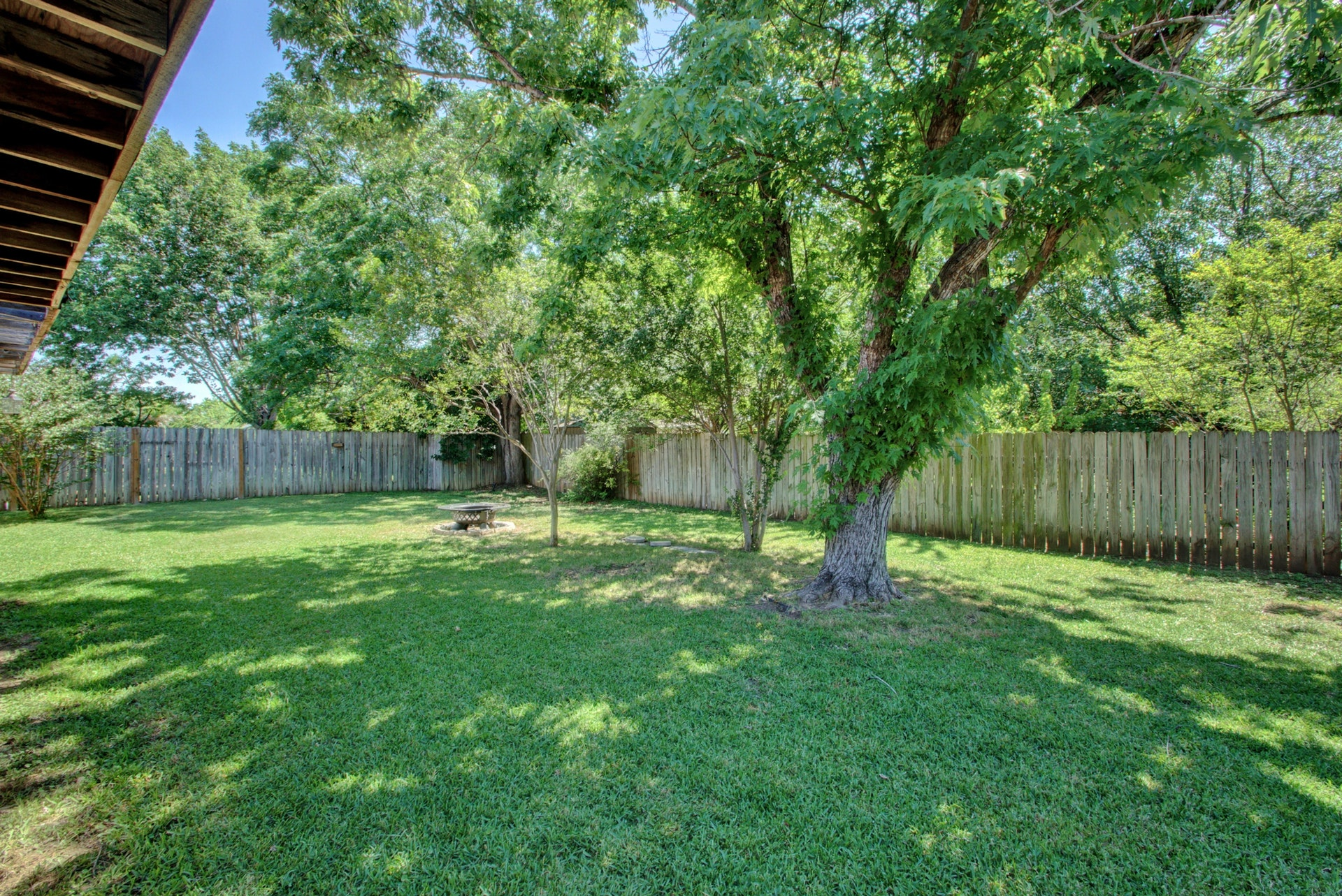 209 Hickok - Backyard 2