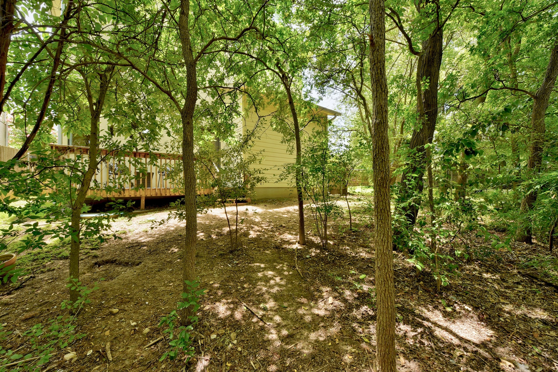 2618 Jefferson B - Backyard