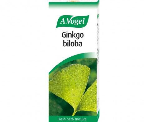A. Vogel Ginkgo Biloba