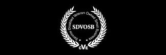 SDVOSB Black Background.jpg