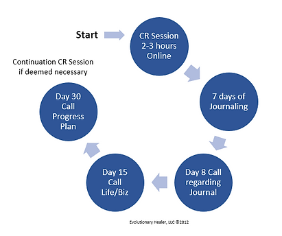 The CR Process a 30 Day VIP Experience.p