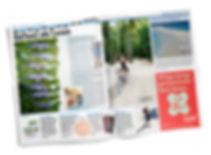 20Min Beitrag, Branding, Logo Design, Grafik, Social Media, Marketing,Event Organisation, Projektmanagement für Slow Sunday, einem Even für Achtsamkeit, Yoga und Erholung für Kathrin Nutter Design Studio in Baden, Aargau, Schweiz