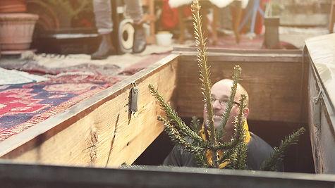 Pöstler mit Weihnachtsbaum für die Weihnachtsbaumkampagne von siroop