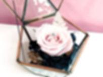Anniversary rose preserved eternal flower jewelry box ring holder
