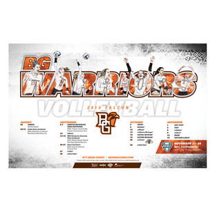 32019 volleyball poster.jpg