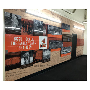 BGSU Hockey Wall Display.jpg