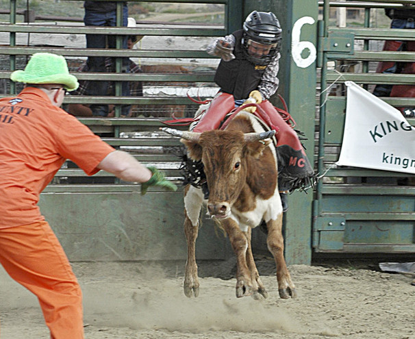 Riding Steers Flying Heels.jpg