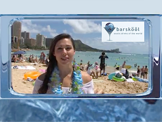 Barskool TV | Niagara Falls and Honolulu Cocktail Tour