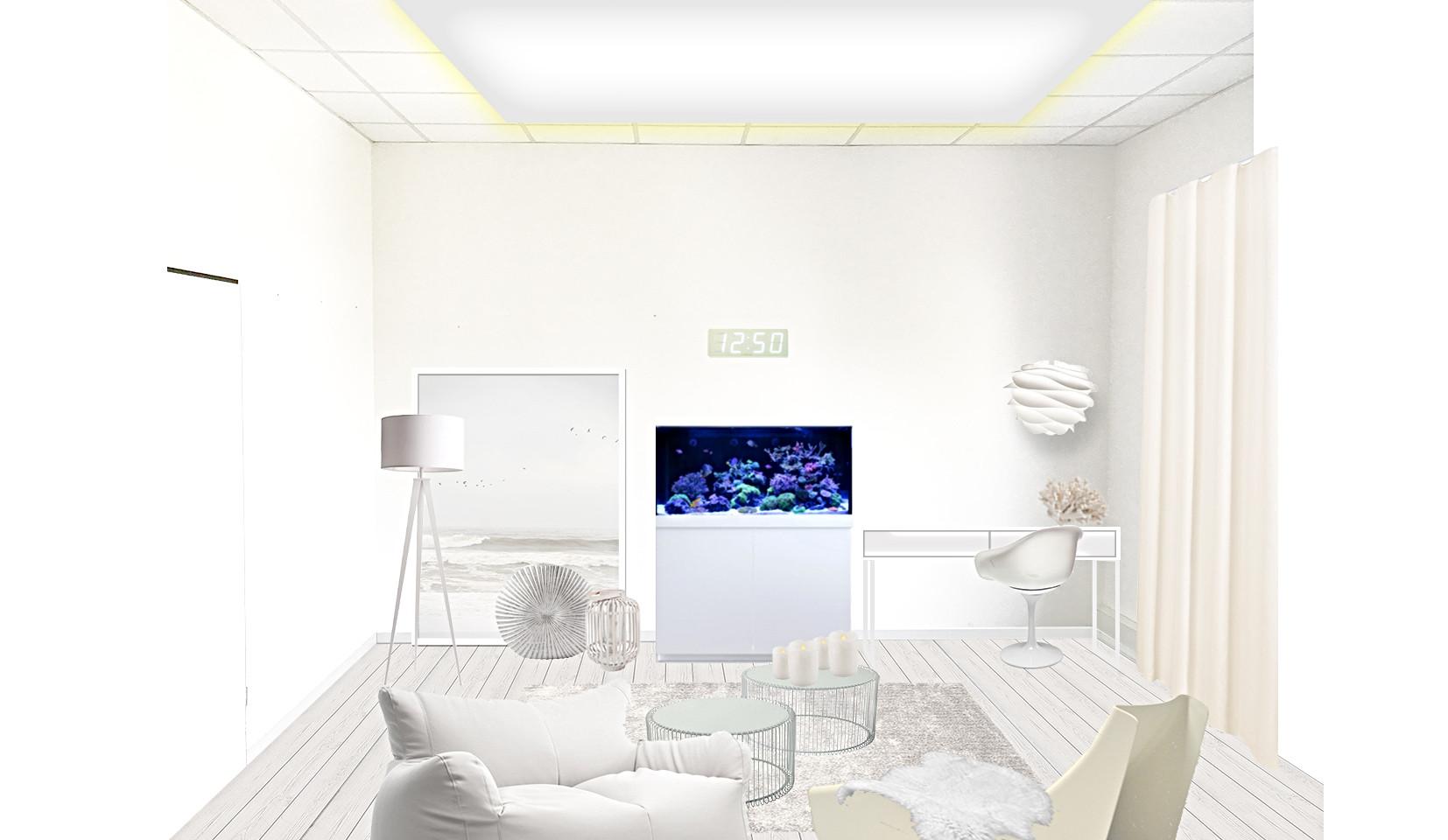 white Livestream -2er.jpg