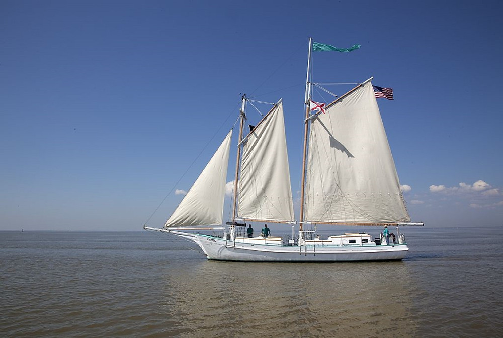 Sailing a beautiful ocean aboard a two-mast schooner.