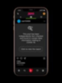 fake news phone.png