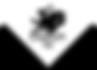 logo_1495005222__79986.png