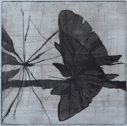 etching 17,5 x17 cm