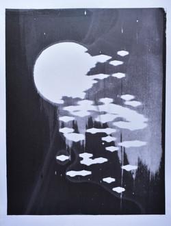 silkscreen print 30 x40 cm