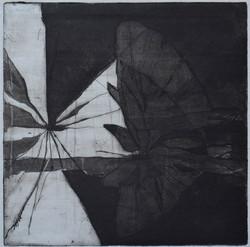 etching 17,5x 17 cm