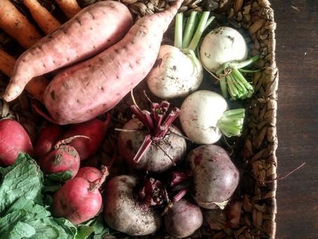 איך להתחיל עם ירקות חורף? מתכון לקציצות ירק, ומתכון לעלים ירוקים מוקפצים
