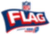 NFL_Flag_Logo_Main_Final-1.jpg