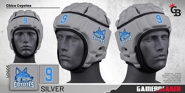 Chico-Coyotes-Silver-Headgear(1).jpg