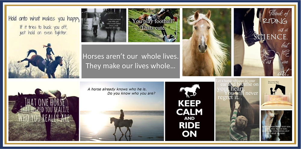 Inspirational Mood-boards for Equestrian