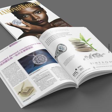 Dimexon Corporate Advertisement 3