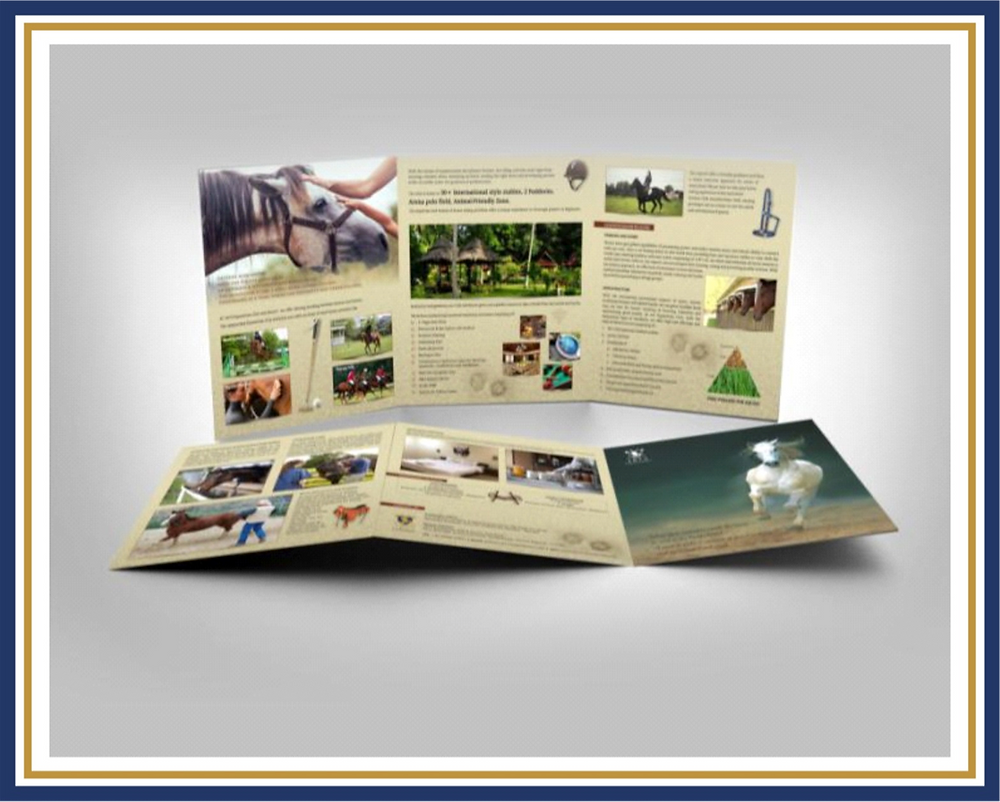Brochure Equestrian