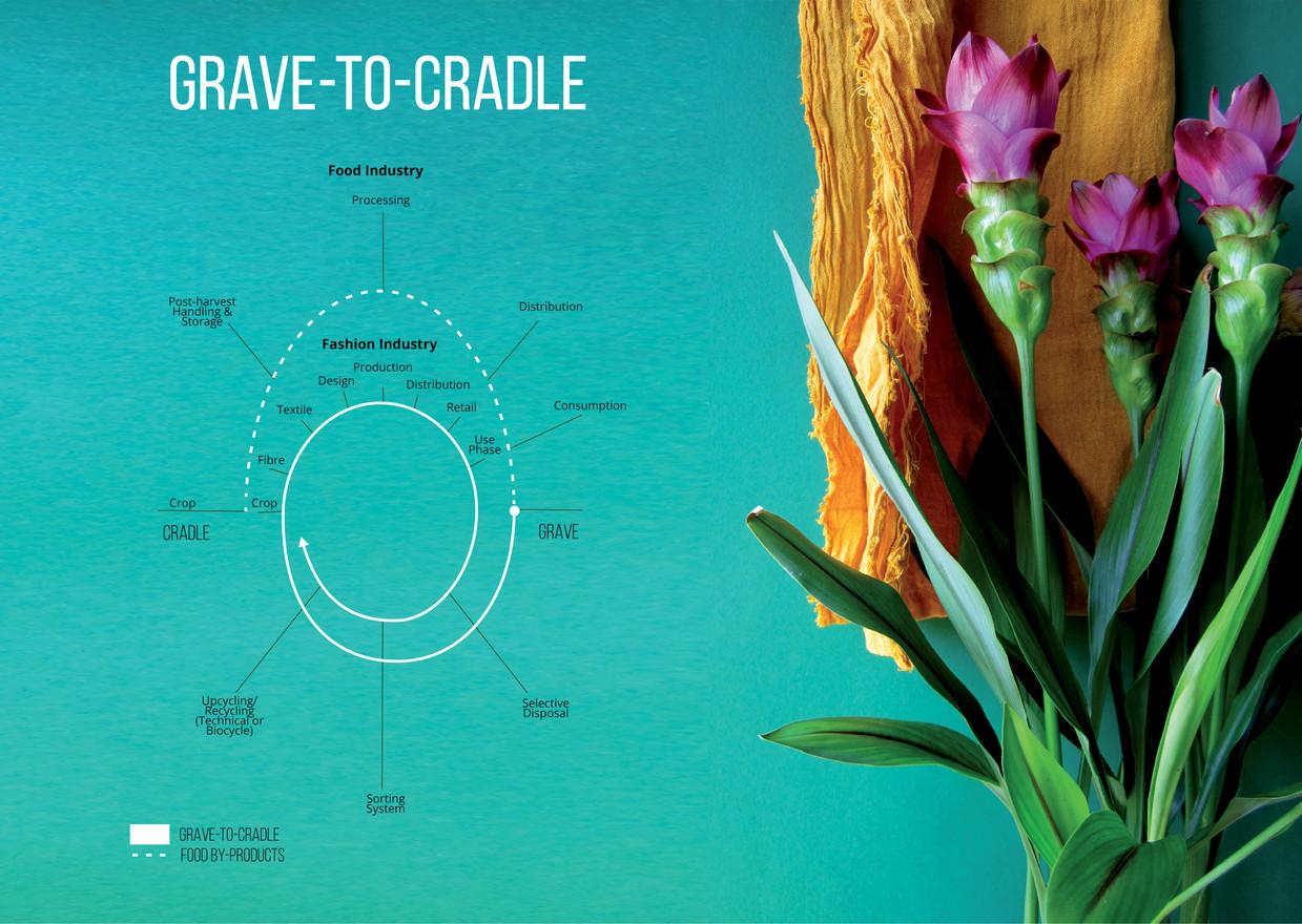 Grave-to-Cradle