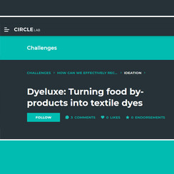 Dyeluxe: Circle Lab Article