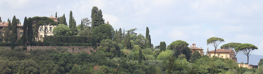 green palace (4).jpg
