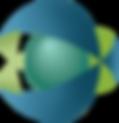 VPapps_CapA-Logo.png
