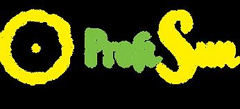 Logo Profisun.png