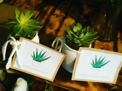 _Thank-you for helping me grow_ teacher gifts $20 _#ham #hamilton #succulents #smallbusiness
