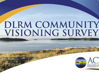 DLRM Community Visioning Survey