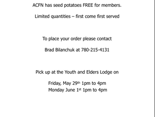 Need Seed Potatoes?  FREE to ACFN Members - Limited Quantities