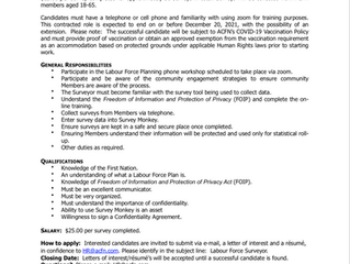 CONTRACT OPPORTUNITY- Labour Force Surveyor