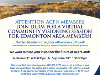 DLRM Virtual Community Visioning - Edmonton
