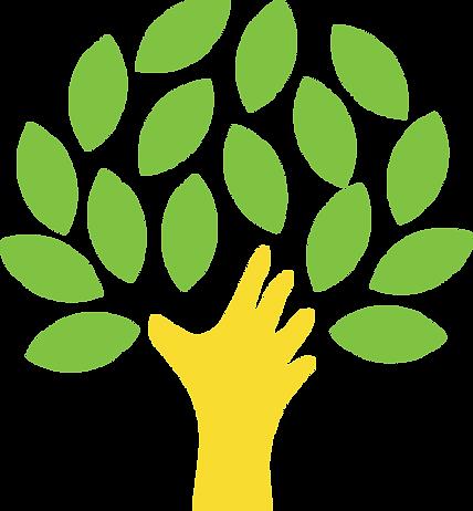Ecosystème SolidConseil