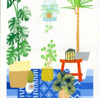 Houseplants Japan.jpg