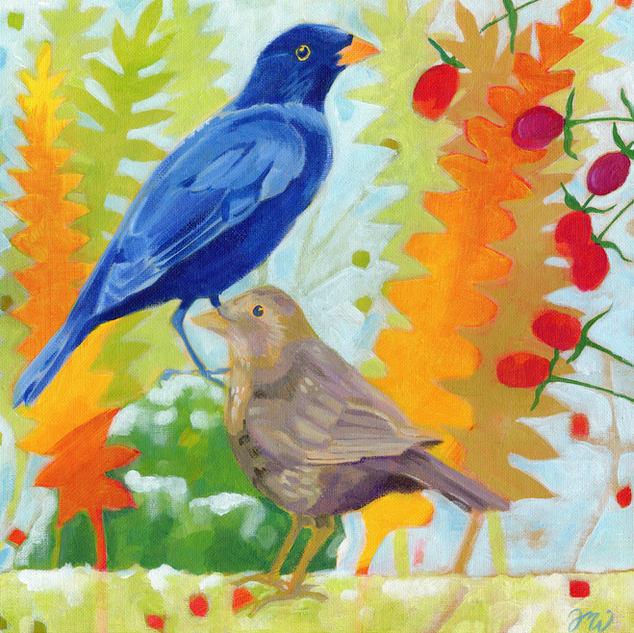 Blackbird Pair