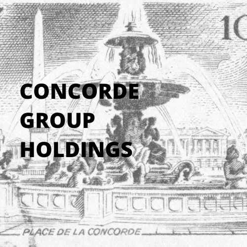Real Estate Developer Concorde Managemen