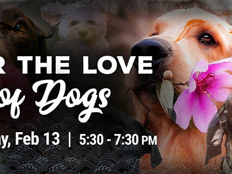 For the Love of Dogs - February 13