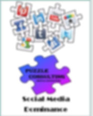 social media dominance workbook cover.JP